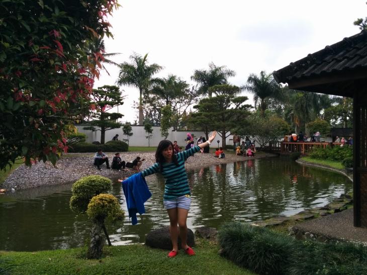 Pond - Japanese Garden