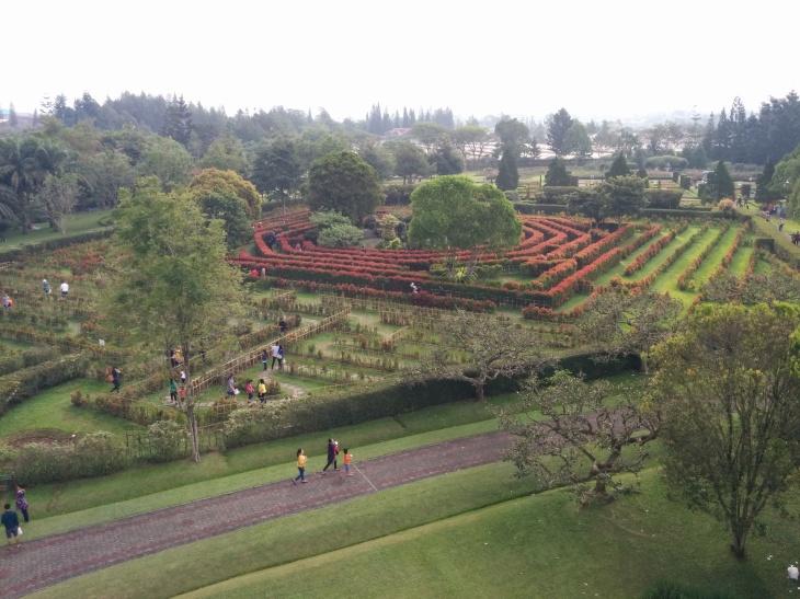 Taman Labyrinth dari Menara Pandang