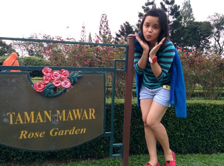 Taman Mawar - Rose Garden